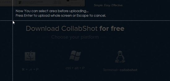collabshot free