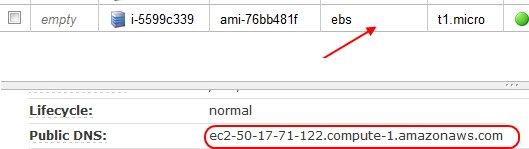 Amazon EC2 Public DNS