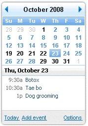 Calendar Google Desktop