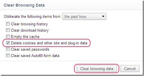 How To Clear Cookies In Google Chrome Browser 3