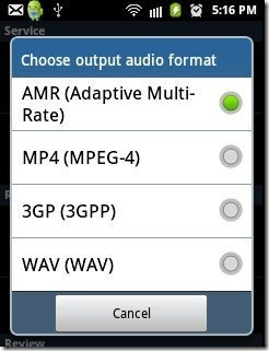 Record My Call Audio Formats