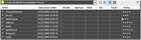 picture browser pie_image_viewer_metadata_list