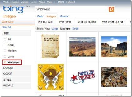 Bing Images 001