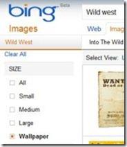 Bing Images 002