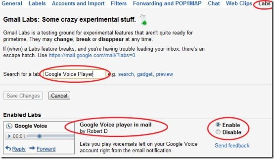 Gmail Google Voice Option