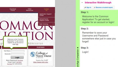 Aplication Comapanion interactive