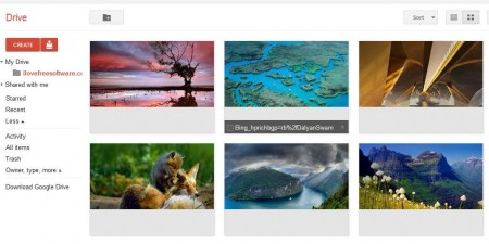 Google Drive images
