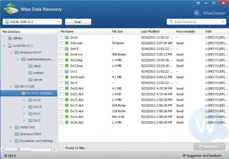 Wise Data Recovery recovered files