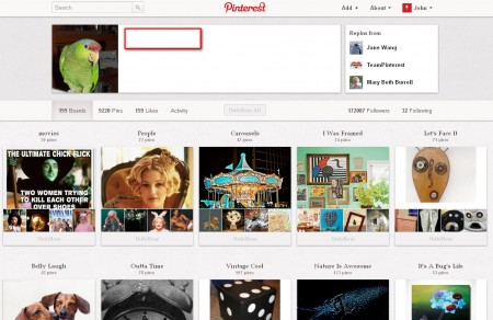 Pinterest filled account