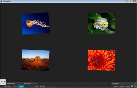 DestroyFlickr viewing photos