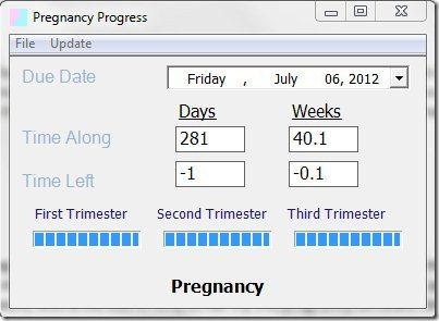 Pregnancy Progress