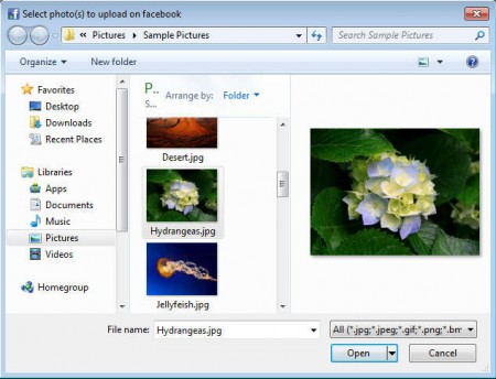 Easy Facebook Photo Uploader default window