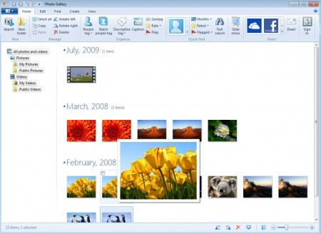 Windows Live Essentials 2012 Photo Gallery image gallery