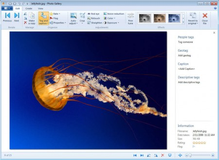 Windows Live Essentials 2012 Photo Maker editing