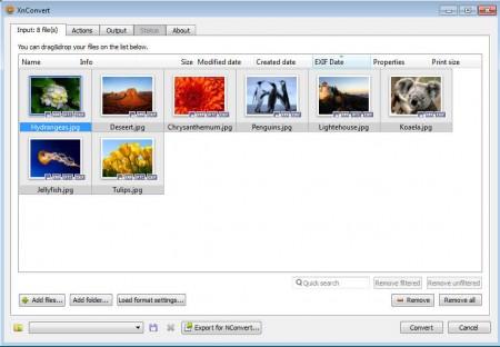 XnConvert images imported