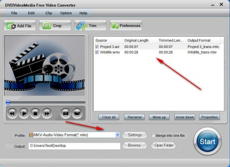 DVDVideoMedia Free Video Converter added files setting