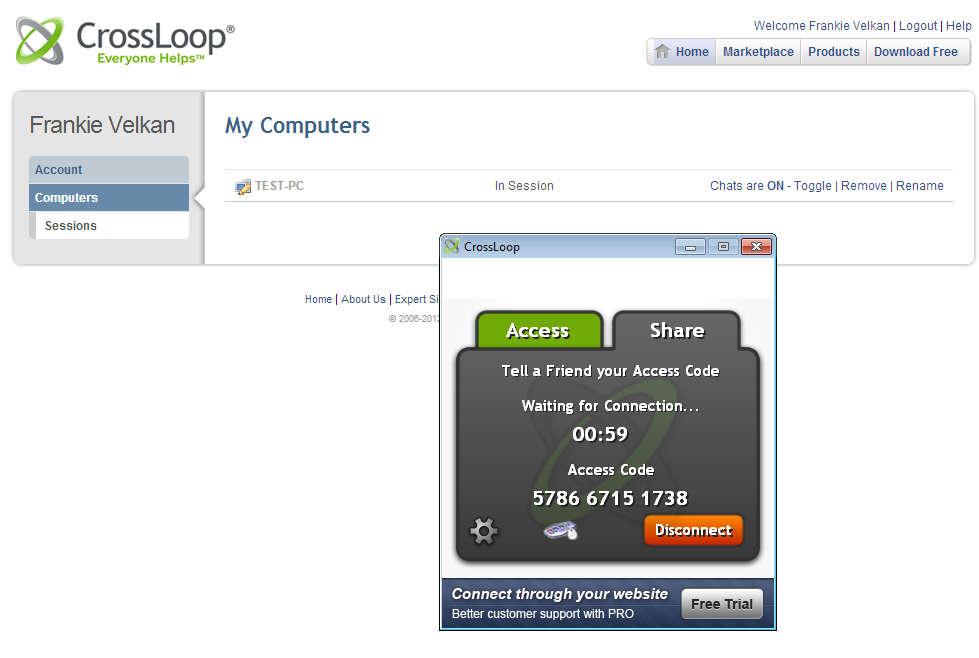 CrossLoop Remote Access default window