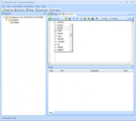 Nucleon File Master SQl Query