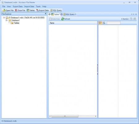 Nucleon File Master opened file