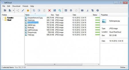 SelfCloud added files