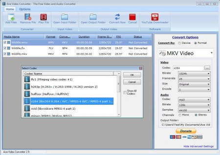 Ace Video Converter opened files format