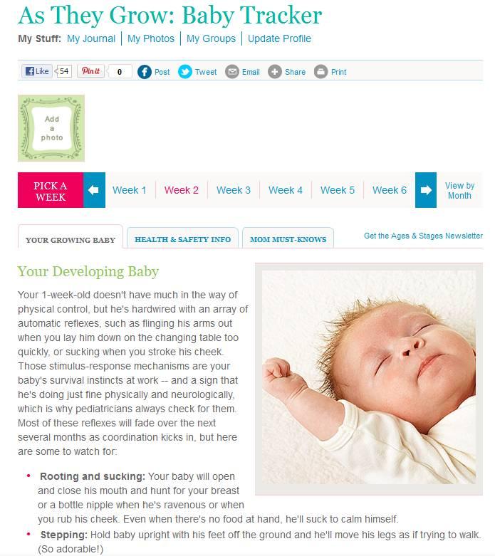 Baby Development Tracker default window