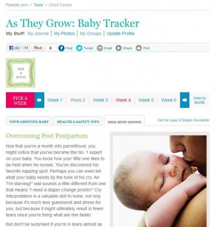 Baby Development Tracker tools