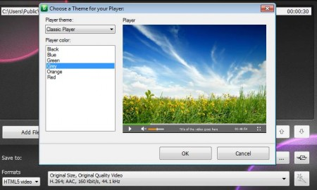 HTML5 Video and Player Converter themes and quality
