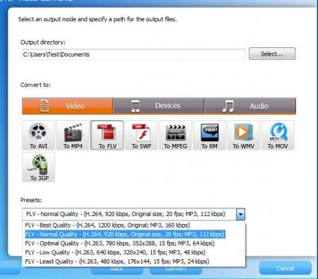 MediaProSoft Free FLV Video Converter setup format