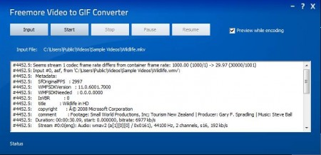 Freemore Video to GIF Converter starting conversion