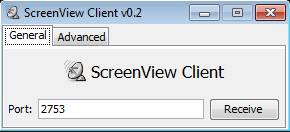ScreenView client setup