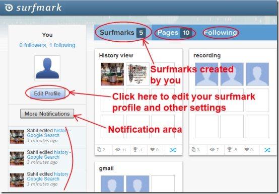 Surfmark add-on 04 free webpage capture