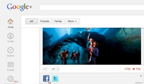 extended share for google plus interface