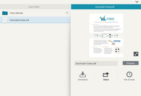 Copy default window