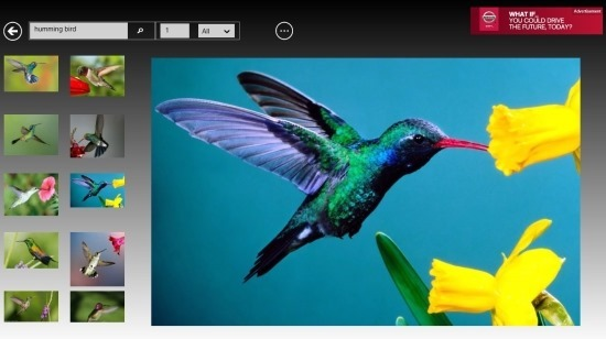 Search Images With Web Image Viewer