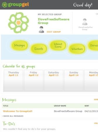 GroupGel default window