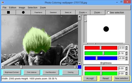 Photo Coloring restoring color