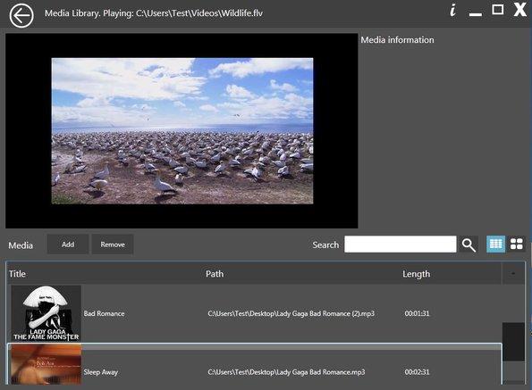 BitGriff Advanced Media Player default window