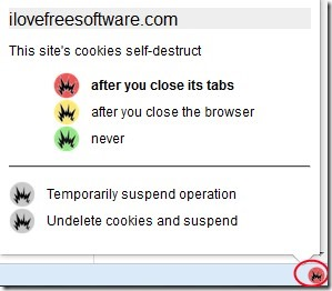 Self Destructing Cookies 01 automatically delete cookies