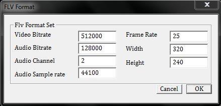 Video Painter To FLV flv settings
