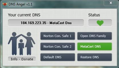 DNS Angel interface 01
