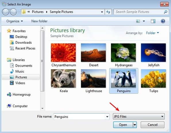ImageViever file selection