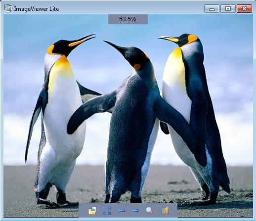 ImageViever image opened