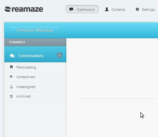 Reamaze default window