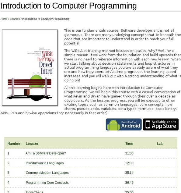 WiBit introduction to programming