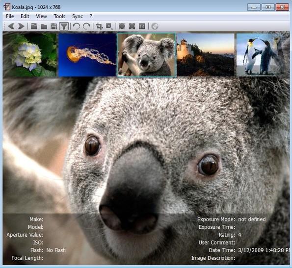 nomacs Image Lounge viewing photo