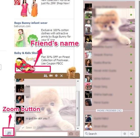 Facebook Chat Platinum chat window