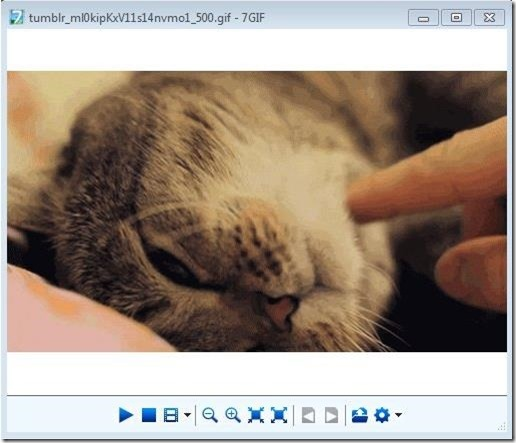 5 Free Gif Viewer To Play And View Animated Gifs