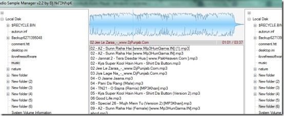 Audio Sample Manager- interface