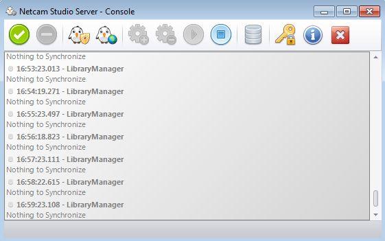 Netcam Studio Server default window